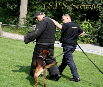 ISPS Security